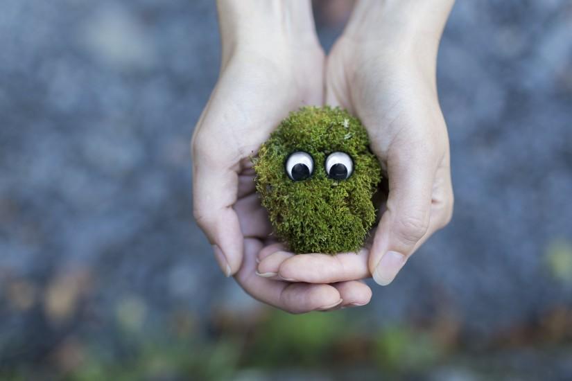 grass-hands-moss-4627-825x550